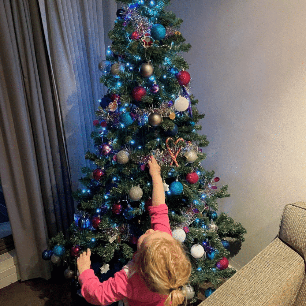 Christmas Tree & Decorations Hire – Decorate Yourself