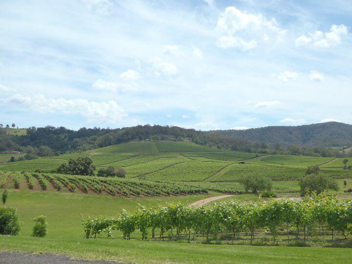 Hunter Wine Valley