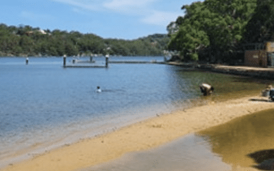 Top 10 Things to Do and See in Oatley and Mortdale